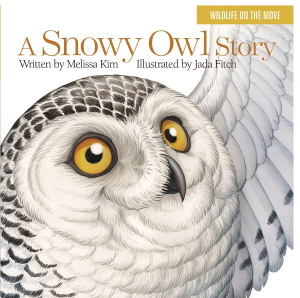 snowy-owl-title