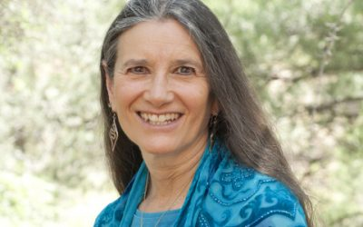 Reimagining the Possible: Sandra Ingerman